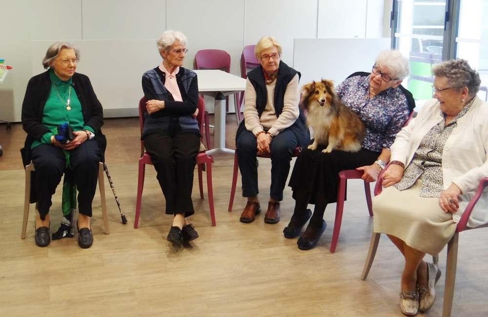 La petite chienne Capri rend visite aux résidents brestois