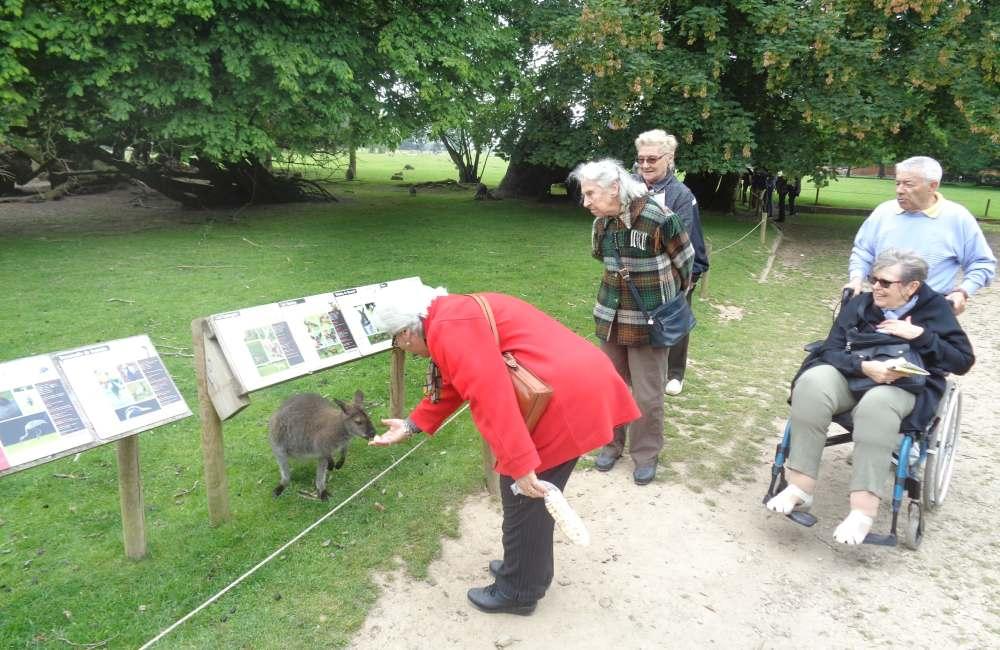 Visite au zoo de Branféré
