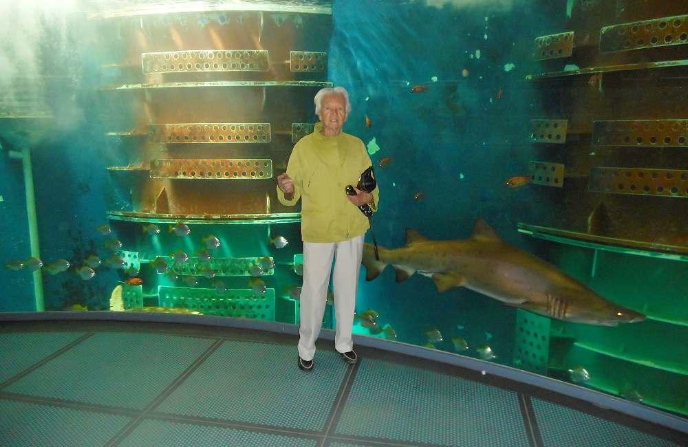 Les résidents de La Bellangerais à l'aquarium de Saint-Malo