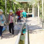 Les seniors de la Mabilais à la découverte d'un jardin extraordinaire