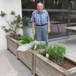 Senior jardine dans les bacs