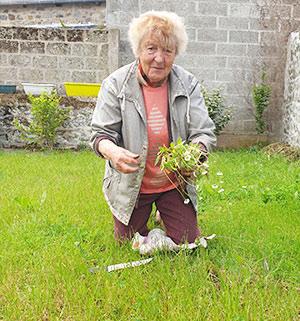Position adéquate jardinage