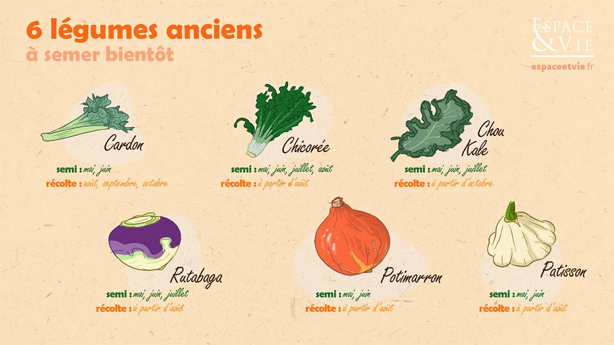 Légumes anciens jardinage